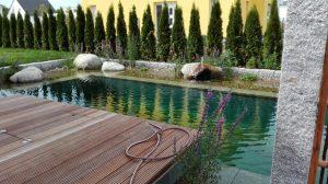 Schwimmteich modern